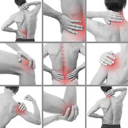 Massage and bodywork at the Hollister Wellness Clinic